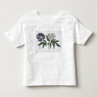 Elder, fig. 13 from 'The Young Landsman', publishe Toddler T-shirt