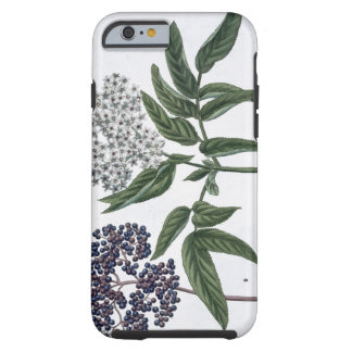 Elder, fig. 13 from 'The Young Landsman', publishe Tough iPhone 6 Case