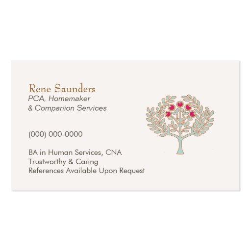 Senior home care business plan