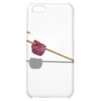 ElderlyGetAwayKit091711 Case For iPhone 5C