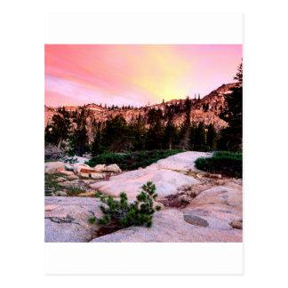 Eldorado del desierto de la desolación del bosque tarjetas postales