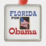 Elección la Florida para Obama Adorno