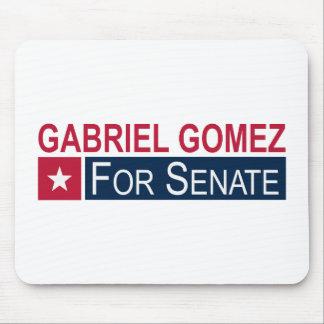 Elect Gabriel Gomez Mouse Pads