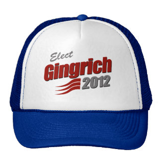 ELECT NEWT GINGRICH MESH HAT