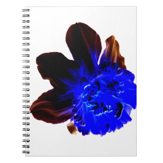 Electric Blue Glow Daffodil Journals