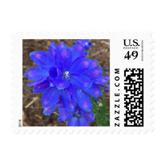 Electric Blue Postage