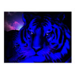 Electric Blue Tiger Post Card