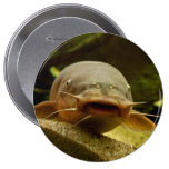 Electric catfish 4 inch round button