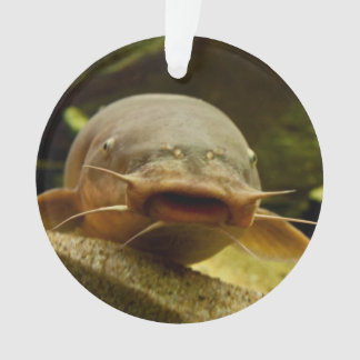 Electric catfish ornament
