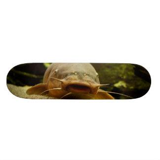 Electric catfish custom skate board