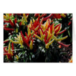 Electric Chili Peppers Greeting Card