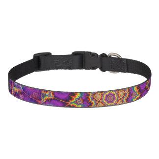 Electric Flower Purple Rainbow Kaleidoscope Art Pet Collar