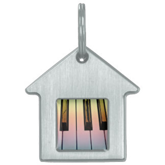 electric keyboard with rainbow overlay pet name tag