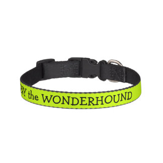 Electric Lime Green Dog Collar Personalized