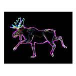 Electric Moose Postcard