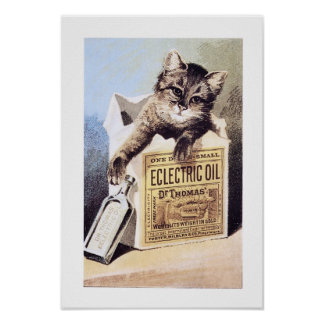 Electric Oil Cat Poster