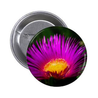 Electric Pink 2 Inch Round Button