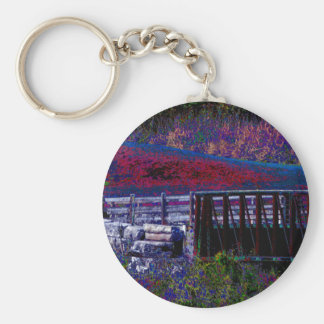 Electric Pole Bridge Skyview Jungle Colorful GIFTS Key Chains