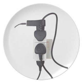 Electrical overload dinner plate