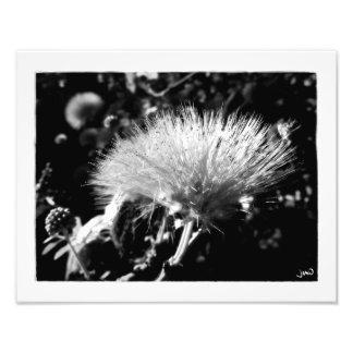 Electrified Photo Print