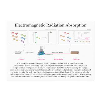 Electromagnetic Radiation Absorption Diagram Canvas Print