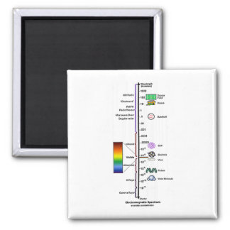 Electromagnetic Spectrum Fridge Magnet