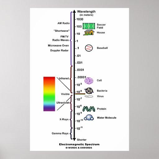 Electromagnetic Spectrum (Wavelengths Comparison) Posters