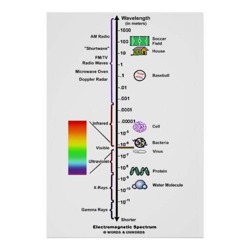 comparing wavelengths in the electromagnetic spectrum Furthermore, the electromagnetic spectrum is the collection of all electromagnetic waves after arranging them according to the wavelength or frequency figure 01: electromagnetic spectrum the electromagnetic spectrum consists of many waves like radio waves, microwaves, infrared rays, visible light, ultra violet rays, x rays, gamma rays, etc.