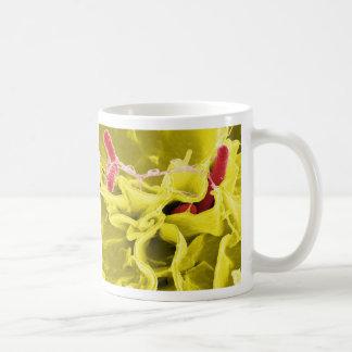 Electron Micrograph Showing Salmonella Typhimurium Coffee Mug