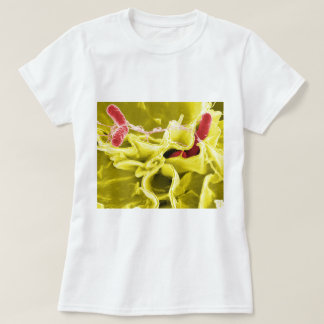 Electron Micrograph Showing Salmonella Typhimurium T-Shirt
