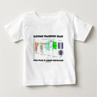 Electron Transport Chain Final Stage Of Aerobic Baby T-Shirt