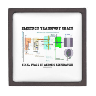 Electron Transport Chain Final Stage Of Aerobic Premium Jewelry Boxes