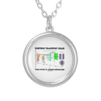 Electron Transport Chain Final Stage Of Aerobic Silver Plated Necklace