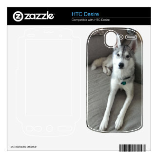 Electronic Device Skin #1 Decal For HTC Desire