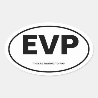 Electronic Voice Phenomona Oval Sticker