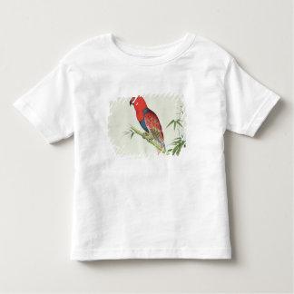 Electus Parrot, on a bamboo shoot Toddler T-shirt