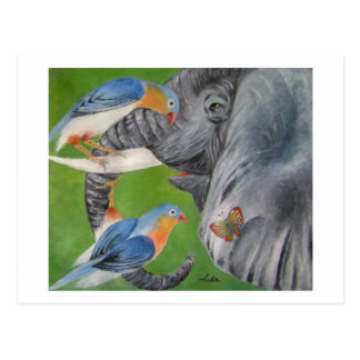 elefantasy1 postcards