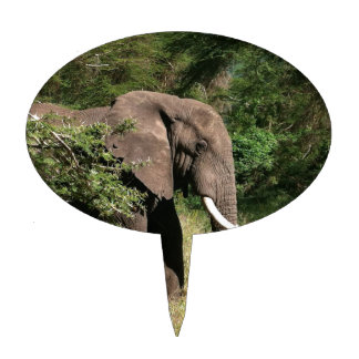 Elefante Decoración De Tarta