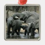 Elefante africano, (africana del Loxodonta), bebie Adorno De Navidad