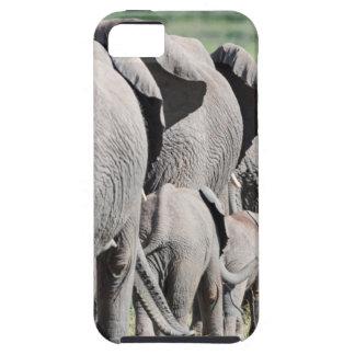 Elefante africano de Bush (Loxodonta Africana) 4 iPhone 5 Case-Mate Cárcasas