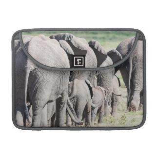Elefante africano de Bush (Loxodonta Africana) 4 Fundas Para Macbook Pro