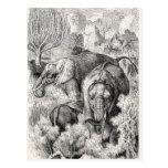 Elefante africano de los 1800s del vintage - postal