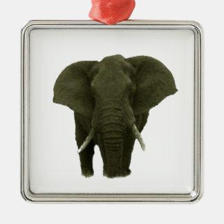 Elefante africano adorno cuadrado plateado