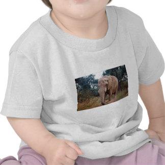Elefante africano en el arbusto camiseta