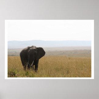 Elefante africano en el poster de Kenia con la fro