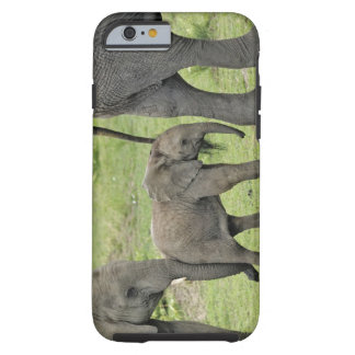 Elefante africano femenino con el bebé, Loxodonta Funda De iPhone 6 Tough