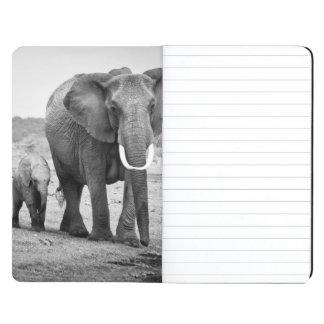 Elefante africano femenino y tres becerros, Kenia Cuadernos