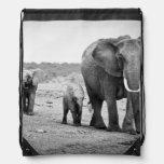 Elefante africano femenino y tres becerros, Kenia Mochila