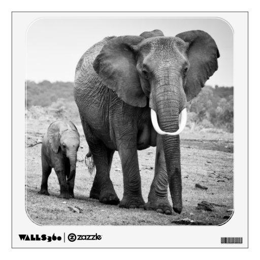 Elefante africano femenino y tres becerros, Kenia Vinilo Adhesivo
