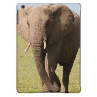 Elefante africano (Loxodonta Africana), Maasai Funda Para iPad Air